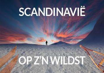 Scandinavië op z'n wildst
