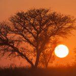 Zonsopkomst; Sunrise